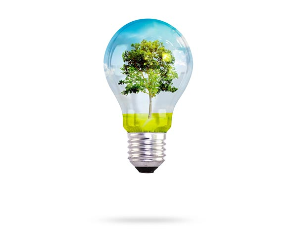 Environmental Website Gallery