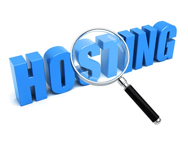 Hosting Company Website Design Package