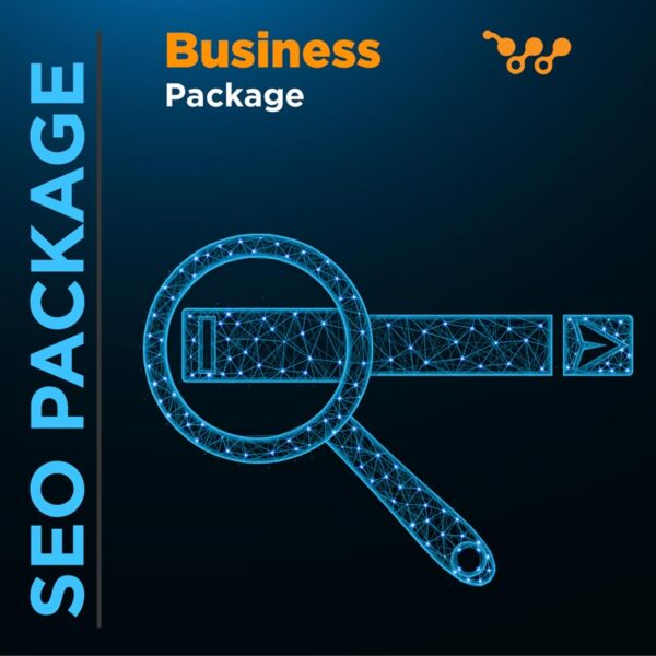 SEO Business Package