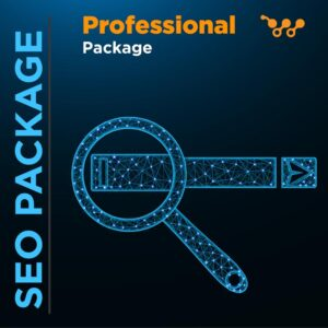 SEO Professional Package