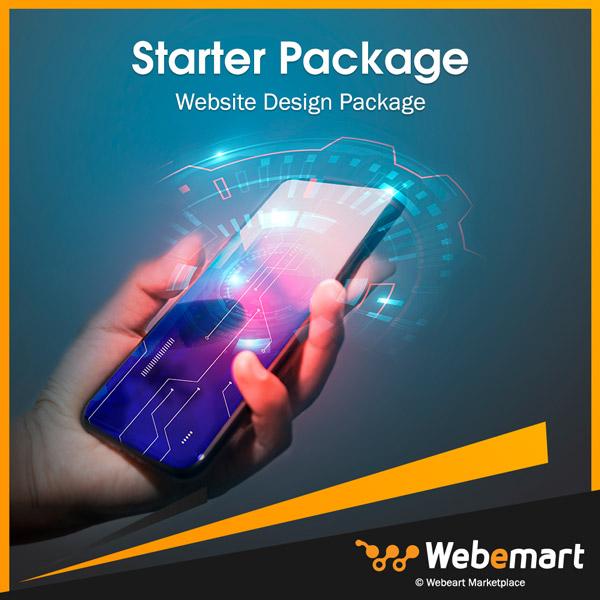 Starter Website Design Package