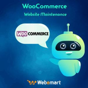 WooCommerce Website Maintenance