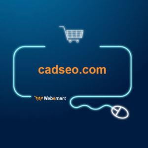 CAD SEO Website for Sale
